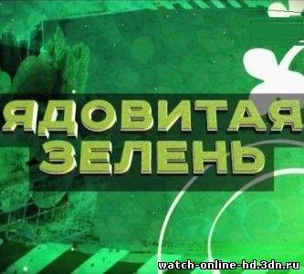 Без обмана Рынок закрыт смотреть онлайн (03.03.2014) ТВЦ