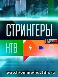 Стрингеры 23.10.2016 смотреть онлайн НТВ бесплатно онлайн