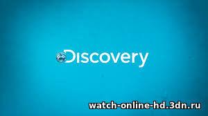 Выжить после селфи (2016) смотреть онлайн Discovery бесплатно онлайн