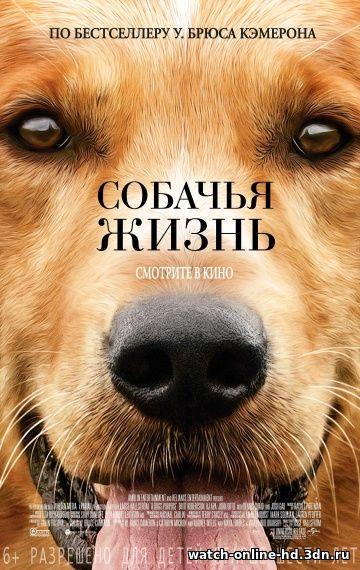 Собачья жизнь (...