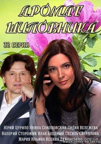 Аромат шиповника 1-32 серия смотреть онлайн сериал (все серии 2014) бесплатно онлайн