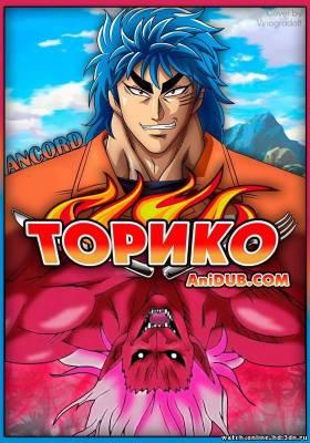 Торико (2011-2012) HDTVRip - 94 / 95 / 96 / 97 серия смотреть онлайн